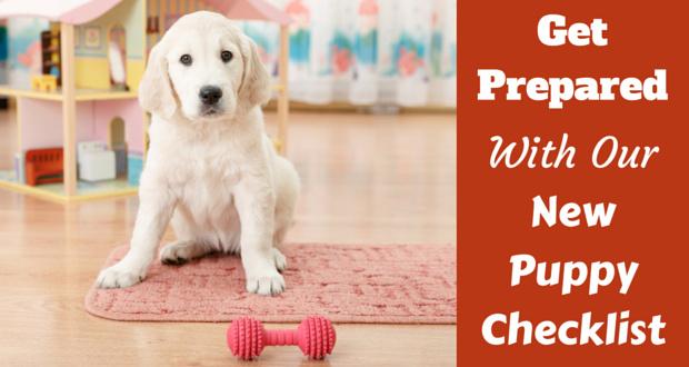 New-puppy-checklist